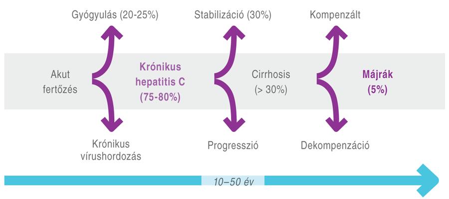 krónikus hepatitis és magas vérnyomás)